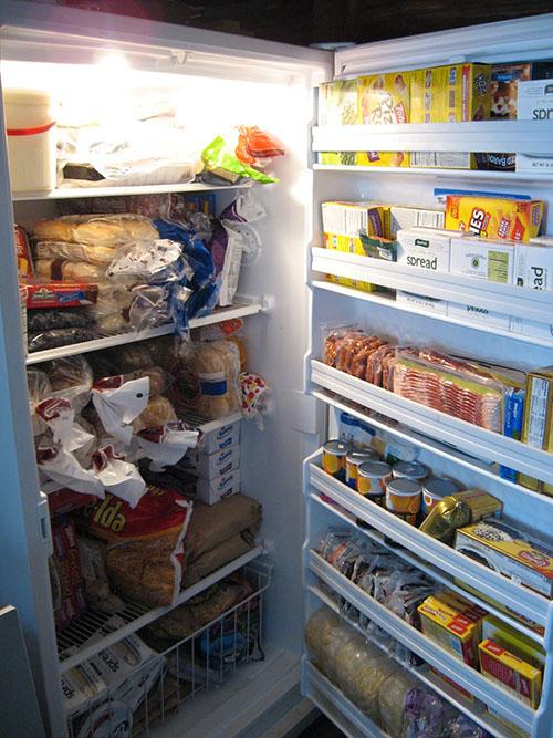 Il segreto a natale mangiare progetto alimentazione - Temperatura freezer casa ...