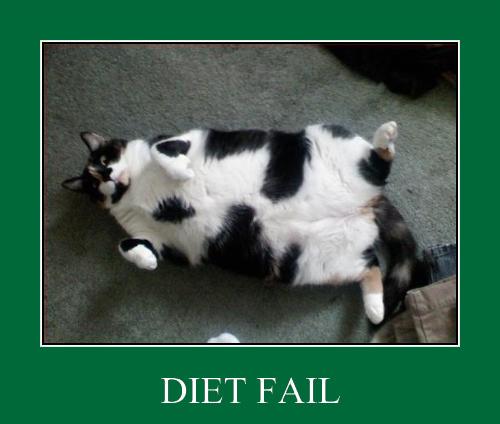 dieta fallita